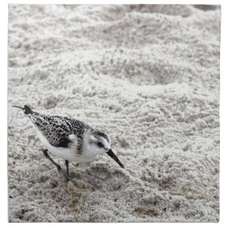 One Young Snowy Plover Bird Napkin