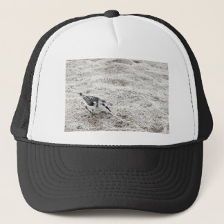 One Young Snowy Plover Bird Trucker Hat