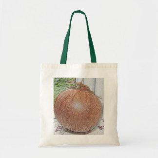 Onion Bag