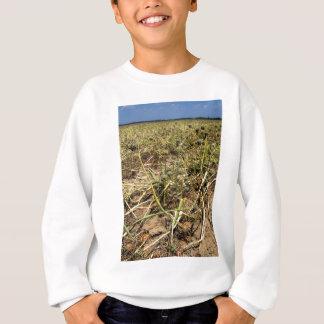 Onion Field Landscape Sweatshirt