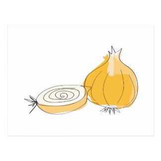 Onion Sketch Postcard