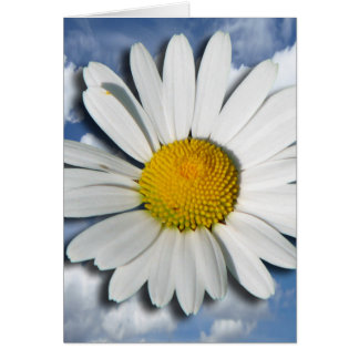 Only a Marguerite Blossom + your text & ideas Card