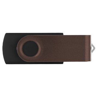 Only brown cocoa modern solid color USB flash drive