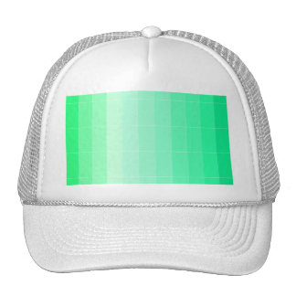 Only Color Lime Green Ombre Trucker Hat