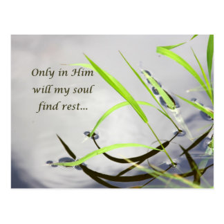 Only in Him Postcard