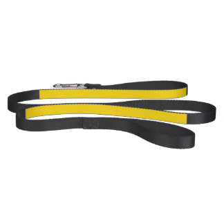 Only lemon yellow pretty solid color background dog leash
