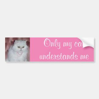 Only My Cat Understands Me Bumper Sticker Persian