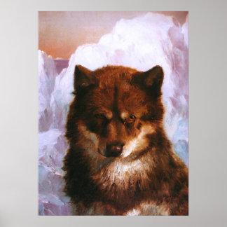 Oosisoak Artic Dog Poster