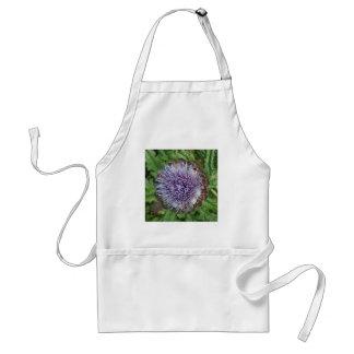 Open Artichoke Flower. Purple. Aprons