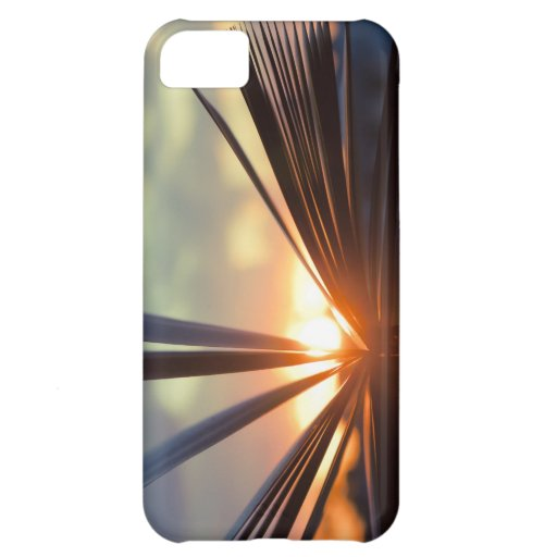 Open Book and Sunset Photography Cover For iPhone 5C