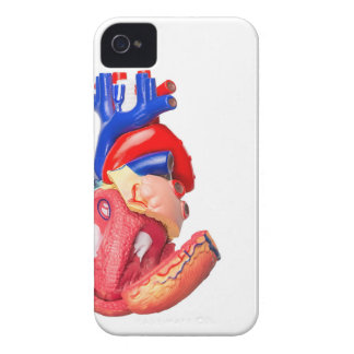Open model human heart on white background iPhone 4 covers