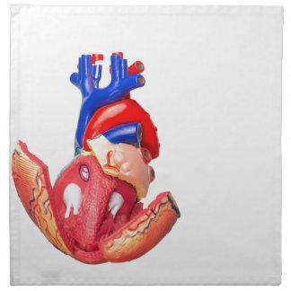 Open model human heart on white background napkin