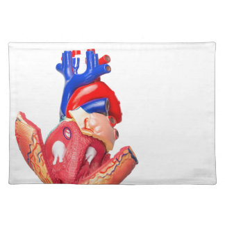 Open model human heart on white background placemat