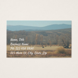 Open Range Business Card