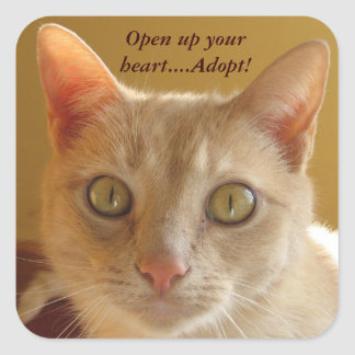 Open up your heart....Adopt! Square Sticker