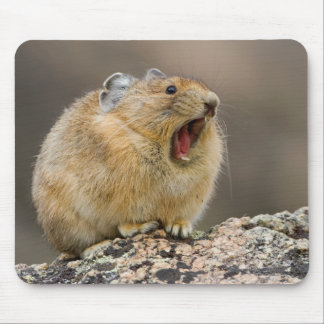 Open Wide Mouse Pad