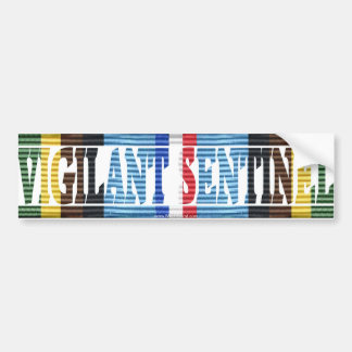 Operation Vigilant Sentinel SW Asia AFEM Sticker Car Bumper Sticker