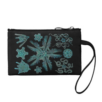 Ophiodea in Turquoise and Black Coin Purse