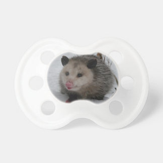 Opossum Dummy