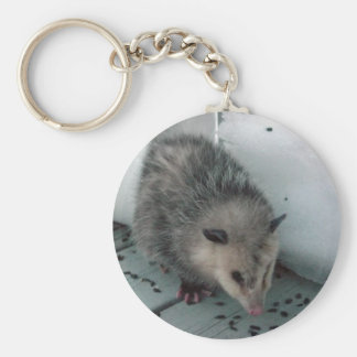 opossum key ring