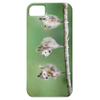 Opossum Lover Phone Case