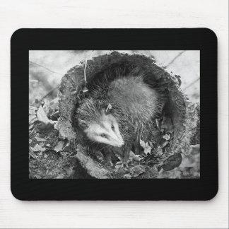 Opossum Mouse Pad