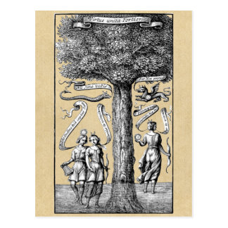 Opposites United by Conjunction in Alchemy Postcard