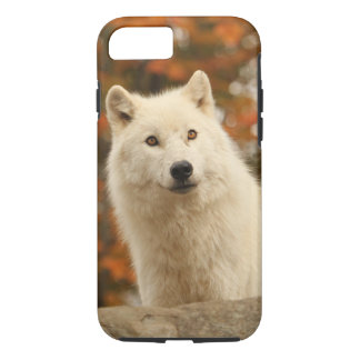 Optimism iPhone 7 Case