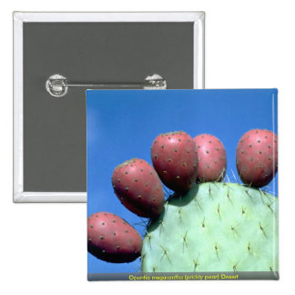 Opuntia megacantha prickly pear Desert Buttons