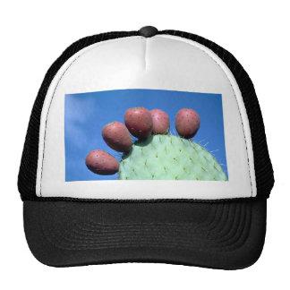 Opuntia megacantha (prickly pear) Desert Trucker Hat