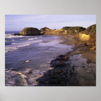 OR, Oregon Coast, Newport, shoreline at Seal Poster