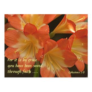 Orange Amaryllis Postcard