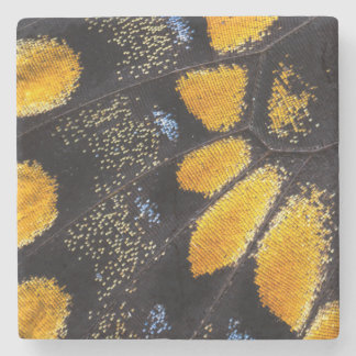 Orange and black butterfly wing stone beverage coaster