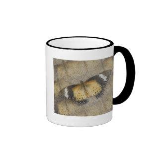 Orange and Black Moth Coffee Mug