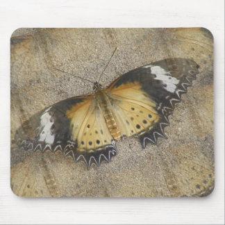 Orange and Black Moth Mouse Pad