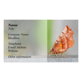 Orange and Brown Moth. Business Card Template