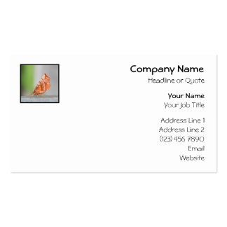Orange and Brown Moth. Business Cards