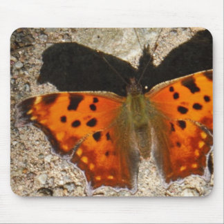 Orange and green butterfly mousepad