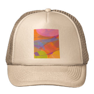 Orange and Other Fruits Mesh Hats