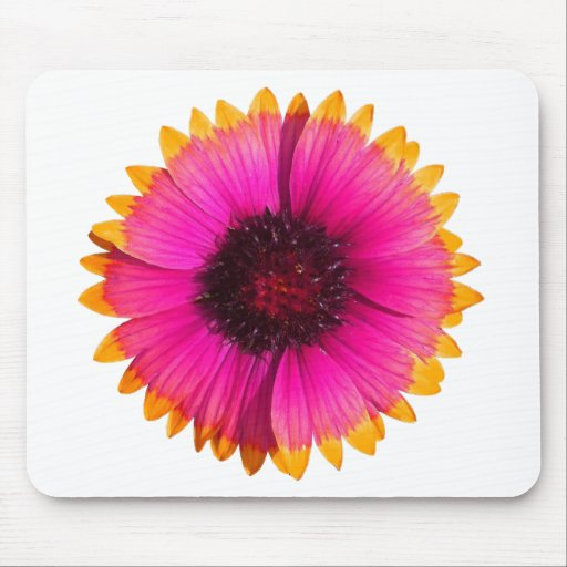 Orange and Pink Flower Mouse Pads