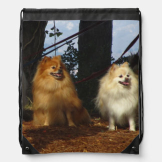 Orange and White Dogs Drawstring Bags