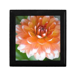 Orange and White Glory Gift Box