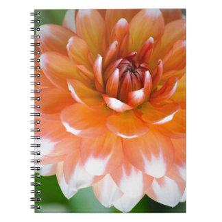 Orange and White Glory Spiral Notebook