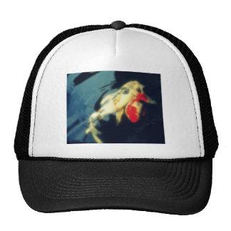 Orange and White Koi on Black Trucker Hats