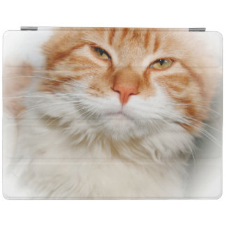 ORANGE AND WHITE TABBY CAT IPAD CASE iPad COVER