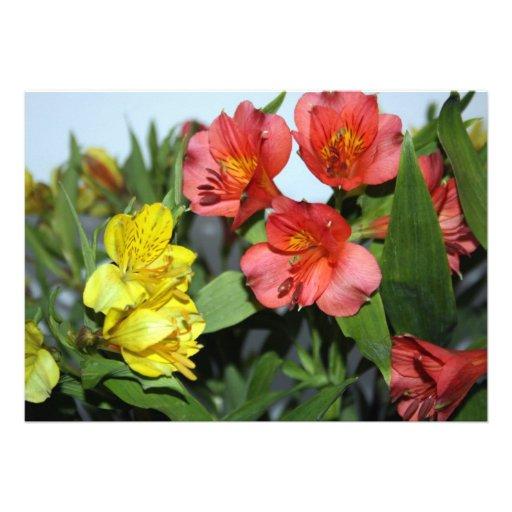 Orange and Yellow  Alstroemeria Flower Invitation Personalized Invitation