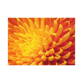 Orange and Yellow Chrysanthemum Stretched Canvas