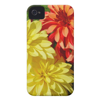 Orange and yellow dahlia flowers Case-Mate iPhone 4 case