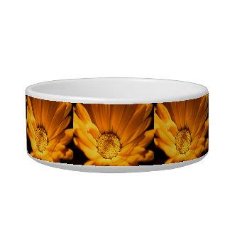 Orange and yellow daisy cat water bowl