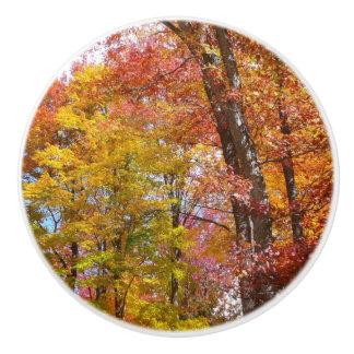 Orange and Yellow Fall Trees Autumn Photography Ceramic Knob